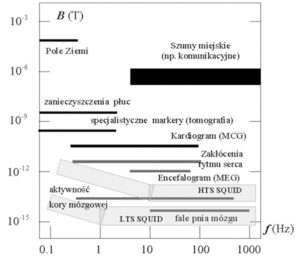 Rys. 7. Natężenia występujących w ciele ludzkim pól magnetycznych i czułości interferometrów kwantowych SQUID-ów